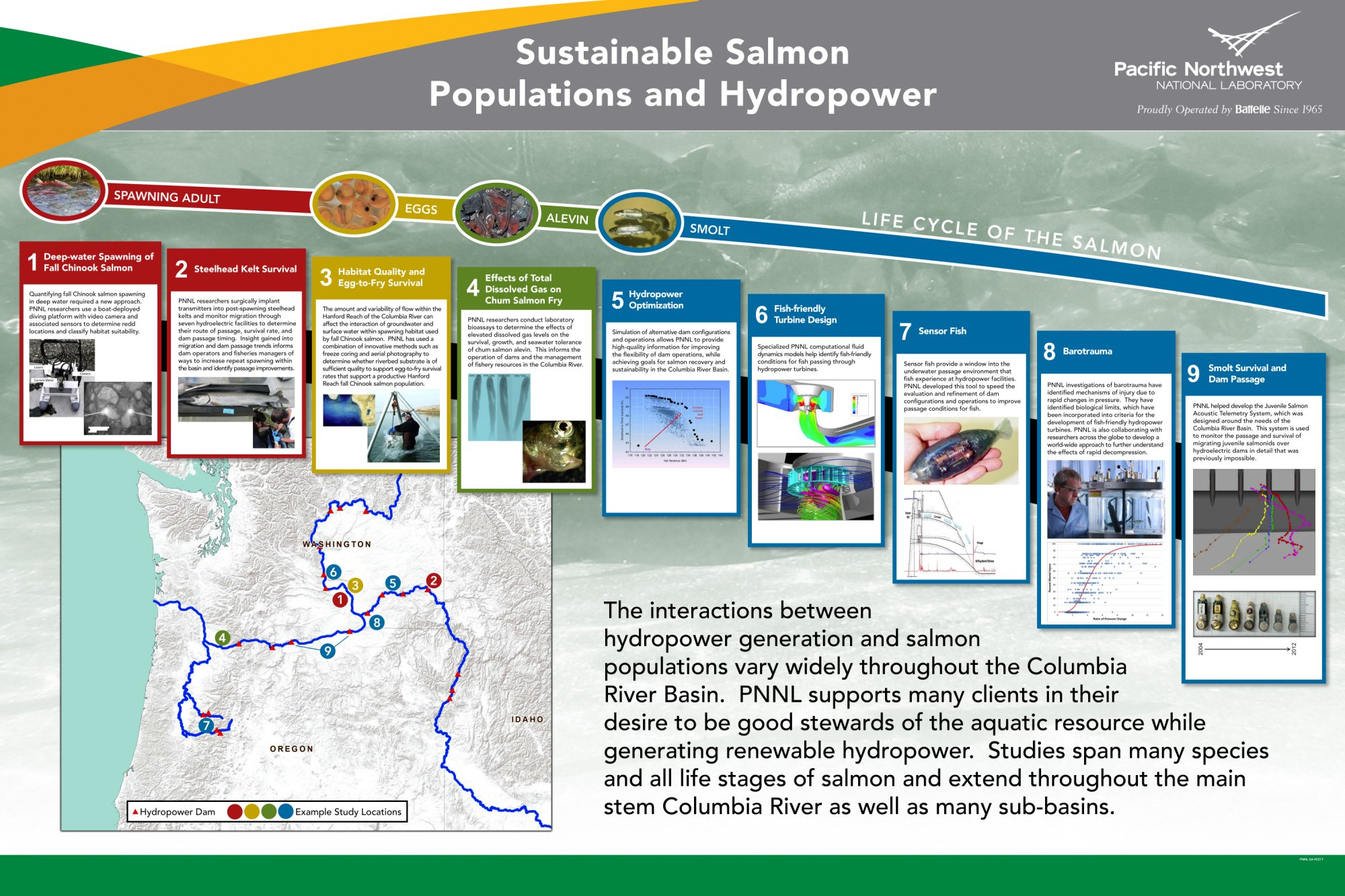 Salmon Populations and Hydropower